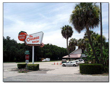 Florida Orange shop