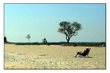 Sherwood Island Westport Ct Beach