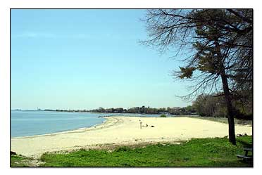 Sherwood Island Beach